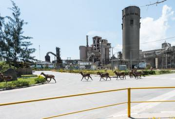 About Bamburi Cement Limited