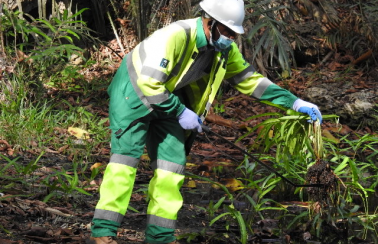 karima ecotourism manager participating in pond clean up exercise